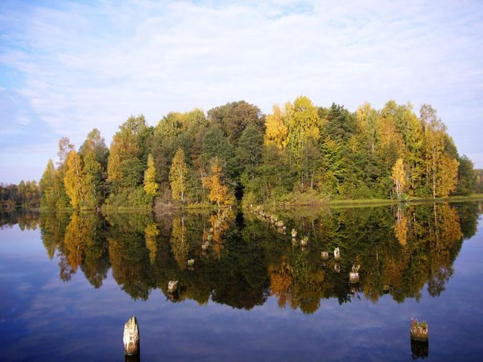 Картинки по запросу у озера  картинки