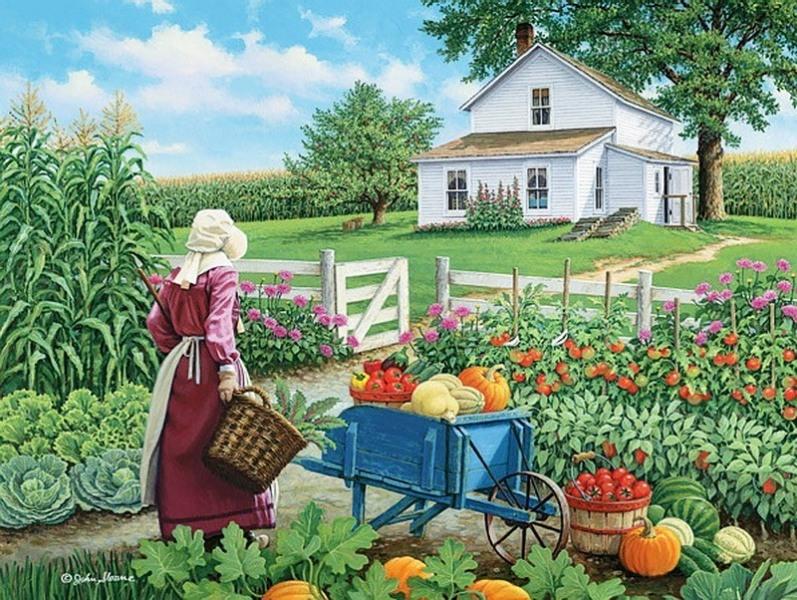 Открытки о садовых участках